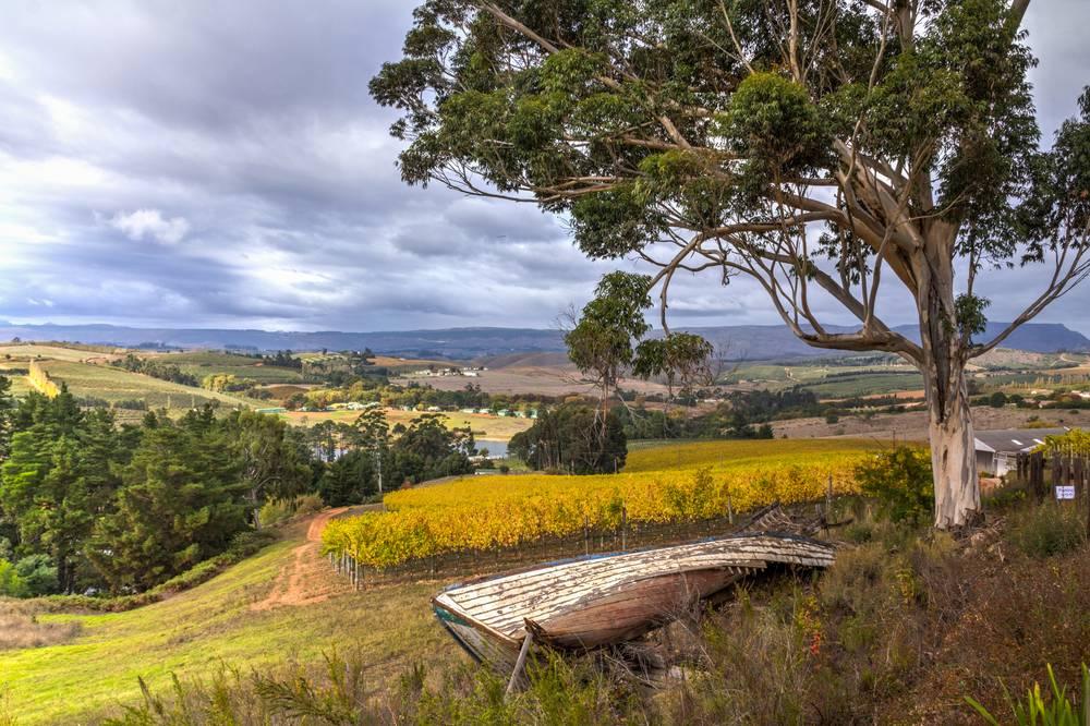 Scenic Elgin valley