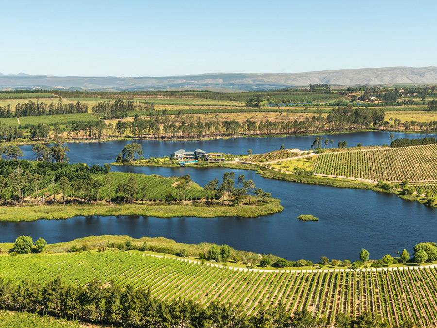 Lothian Vineyards Estate in the Western Cape, South Africa