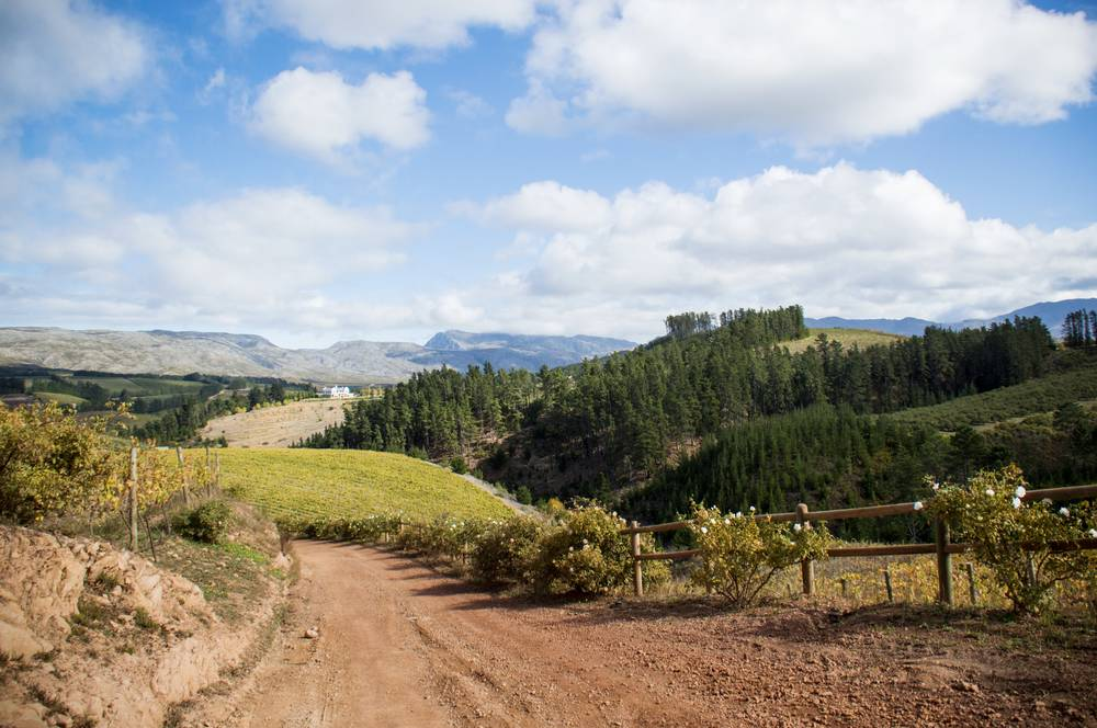 View over the Elgin valley