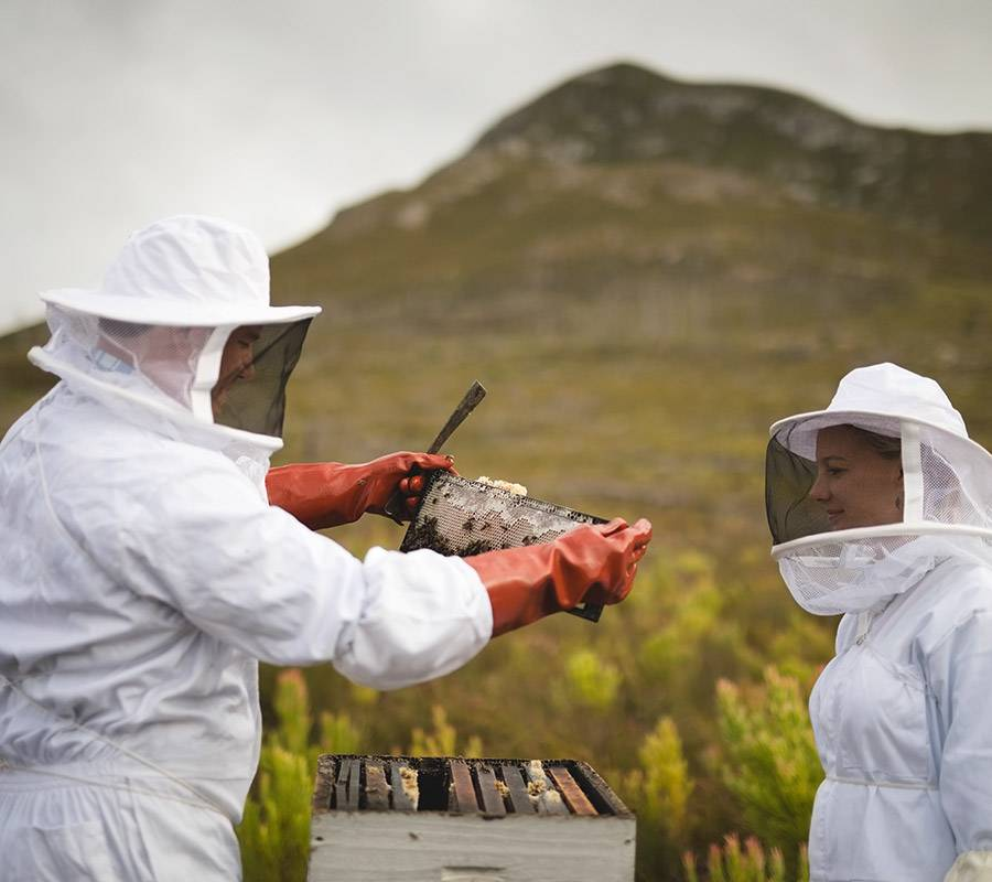 Overberg Honey Shop