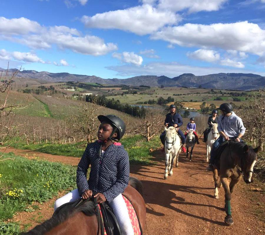 Trail rides in the beautiful Elgin Valley