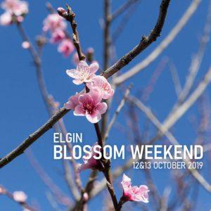2019 Elgin Valley Blossom Weekend