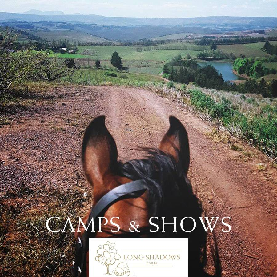 Long Shadows Farm horse riding shows and camps
