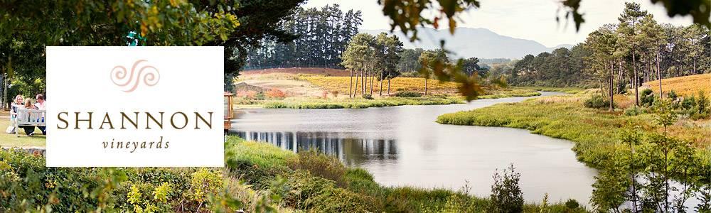 Shannon Vineyards panorama