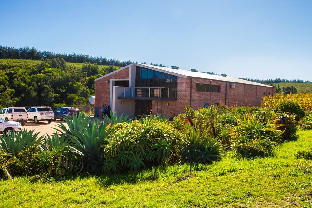 Elgin Ridge organic wine tasting room