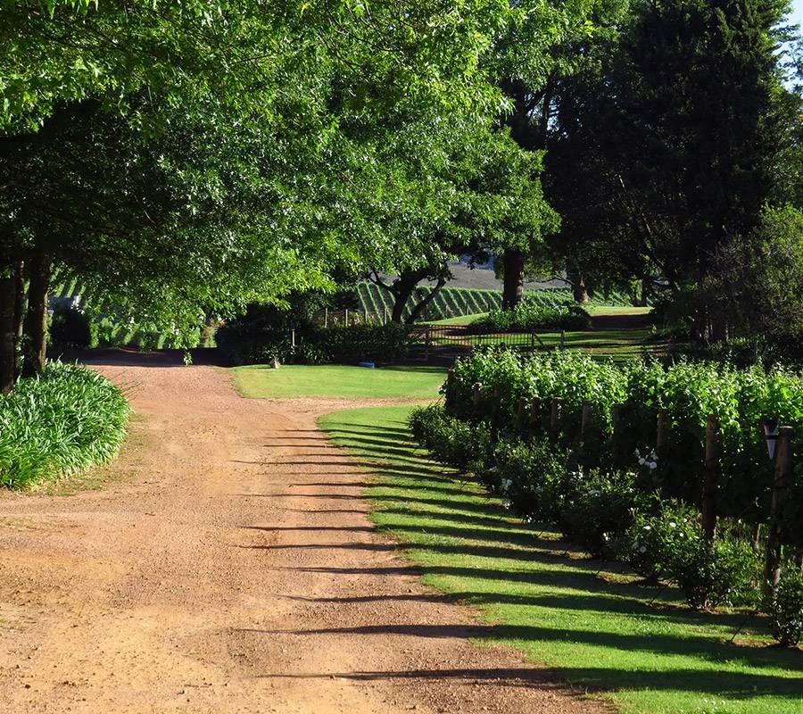 Gardens of Sutherland Cottage