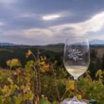 The Elgin Cool Wine and Country Food Festival held the weekend of 29 and 30 April 2017