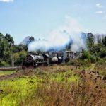 Steam train arriving at Elgin Railway Market