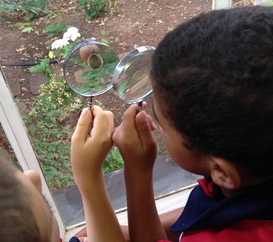 Grade 1 environmental learning