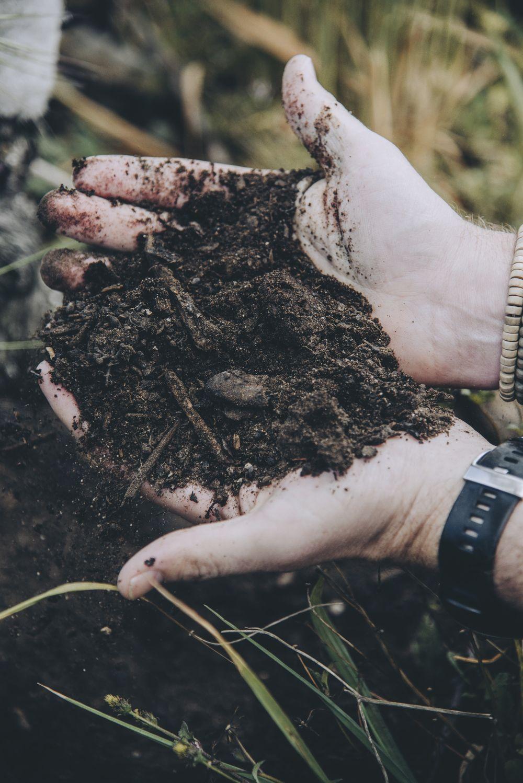 Brocha soil