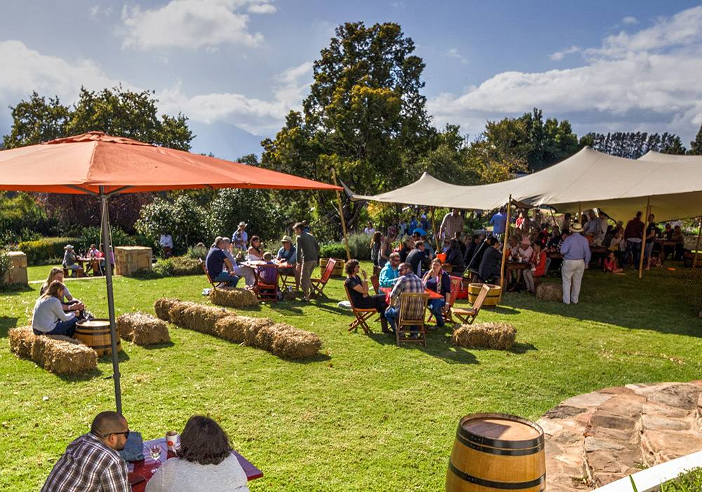 Elgin Cool Wine and Country Food Festival 2017