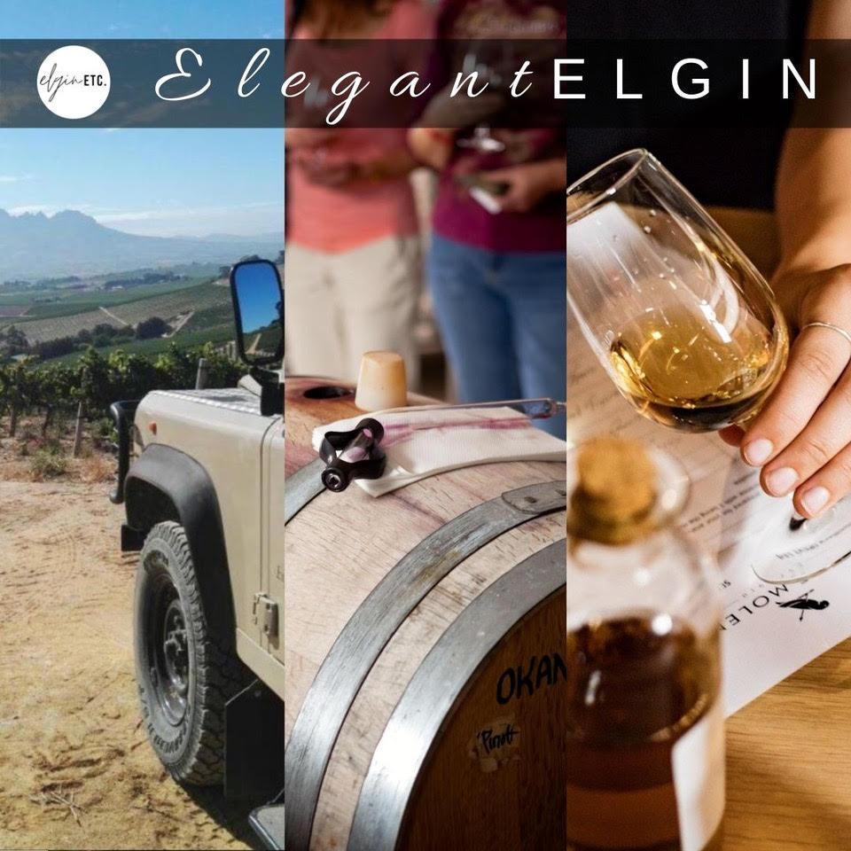 Elegant Elgin