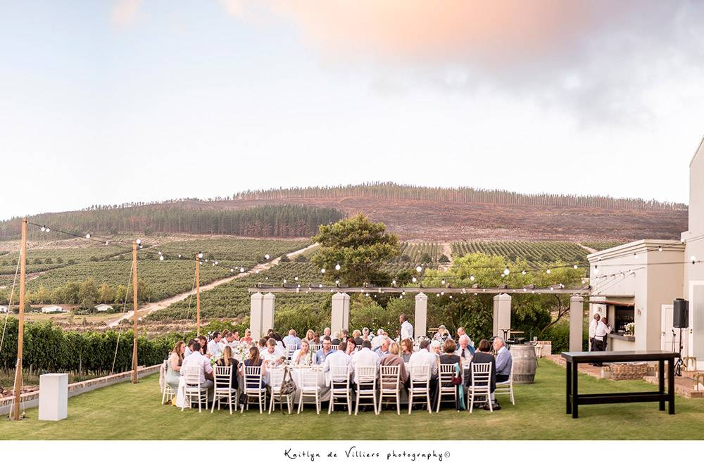 Event at South Hill Vineyards