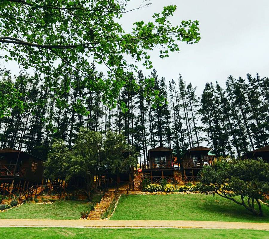 Accommodation at Elgin River Lodge