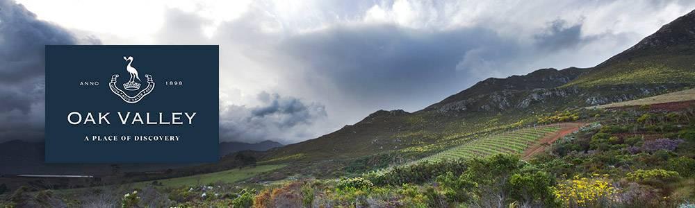 Oak Valley vineyards against mountain slopes